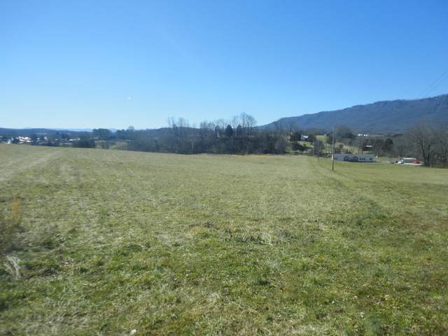Ruby Lane, LaFollette, TN 37766 (#1143889) :: A+ Team