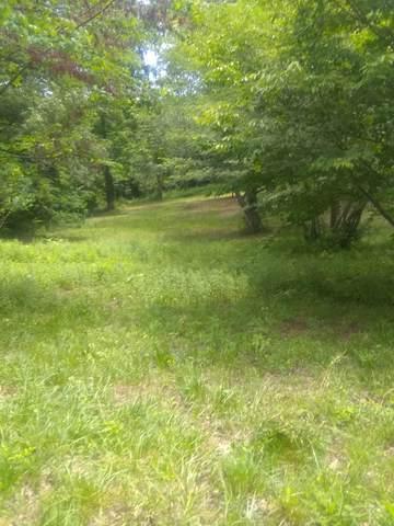255 Watson Trace, Madisonville, TN 37354 (#1143928) :: Billy Houston Group