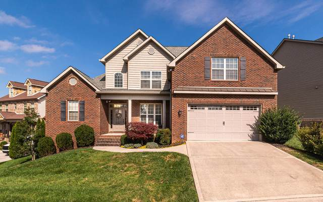 9953 Winding Hill Lane, Knoxville, TN 37931 (#1143975) :: A+ Team