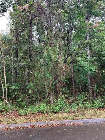 Woodstock Drive, Rutledge, TN 37861 (#1143998) :: A+ Team
