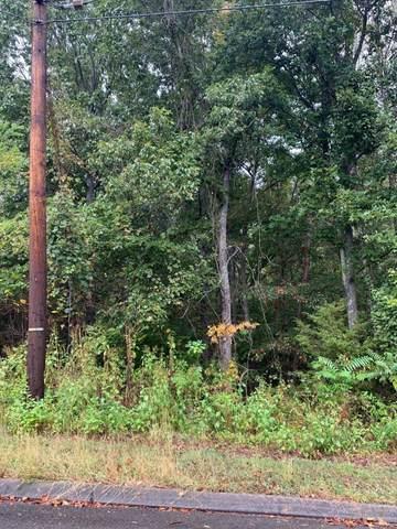 Lot 176 Woodstock Drive, Rutledge, TN 37861 (#1144003) :: Catrina Foster Group