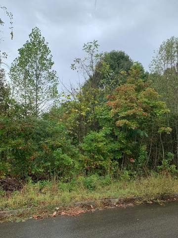 Lot 175 Woodstock Drive, Rutledge, TN 37861 (#1144014) :: Catrina Foster Group