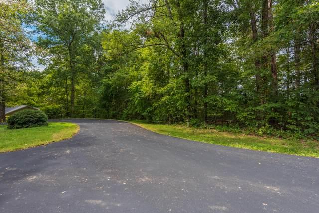 131 Doya Lane, Loudon, TN 37774 (#1144102) :: Billy Houston Group
