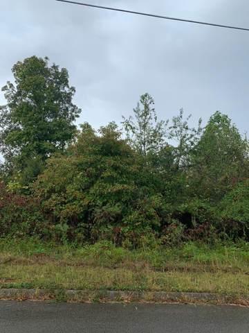 Lot 172 Woodstock Drive, Rutledge, TN 37861 (#1144110) :: Catrina Foster Group