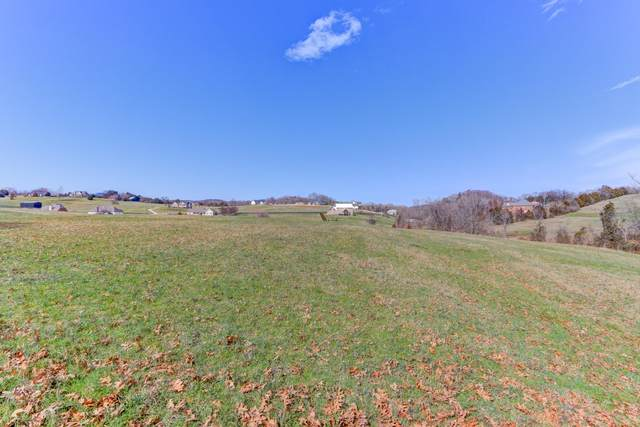 Lot 60 Creek Ct, Blaine, TN 37709 (#1144154) :: Shannon Foster Boline Group