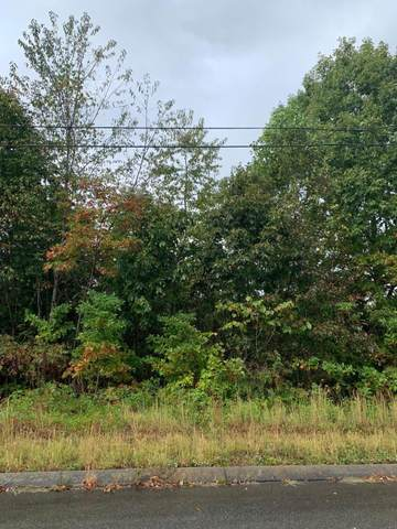 Lot 174 Woodstock Drive, Rutledge, TN 37861 (#1144171) :: Catrina Foster Group