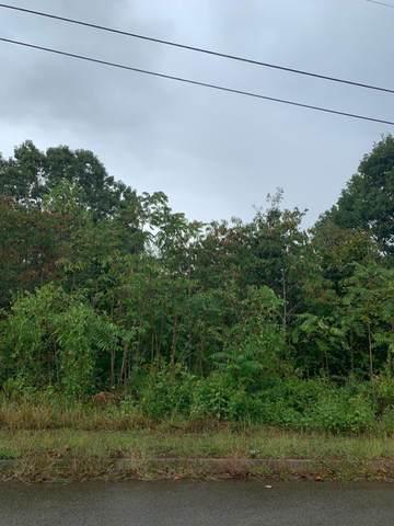 Woodstock Drive, Rutledge, TN 37861 (#1144384) :: Catrina Foster Group
