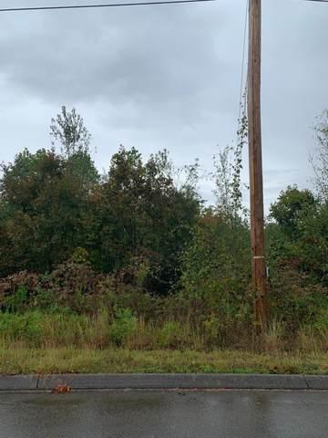 Woodstock Drive, Rutledge, TN 37861 (#1144407) :: Catrina Foster Group