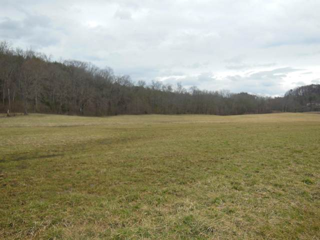 Belltown Road, Tellico Plains, TN 37385 (#1144418) :: Realty Executives Associates Main Street