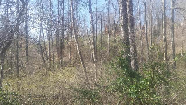 Lot 385 Mystic Star Drive, New Tazewell, TN 37825 (#1144470) :: Realty Executives Associates