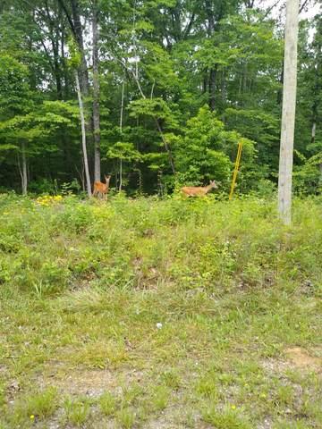 152 Beachwood Drive, Crossville, TN 38558 (#1144626) :: Adam Wilson Realty