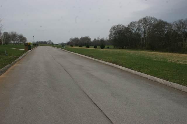 Shannadoah Lane, Madisonville, TN 37354 (#1144650) :: Shannon Foster Boline Group