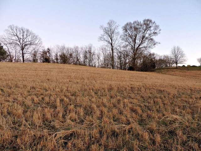 Lot 46 Holston River Drive, Rutledge, TN 37861 (#1144685) :: Adam Wilson Realty