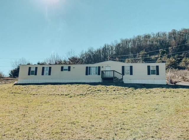 207 High Ridge Court, Maynardville, TN 37807 (#1144762) :: Billy Houston Group