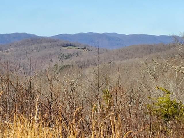 Mountain Way, Sharps Chapel, TN 37866 (#1144819) :: JET Real Estate