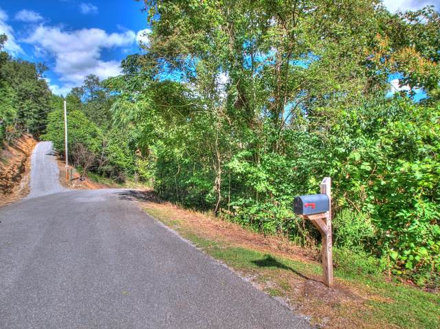 Lot 221 Clinch View Rd, New Tazewell, TN 37825 (#1144824) :: Billy Houston Group