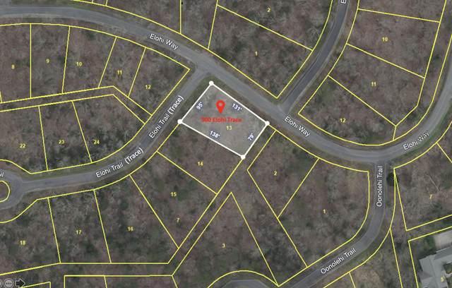 300 Elohi Trace, Loudon, TN 37774 (#1144840) :: Catrina Foster Group