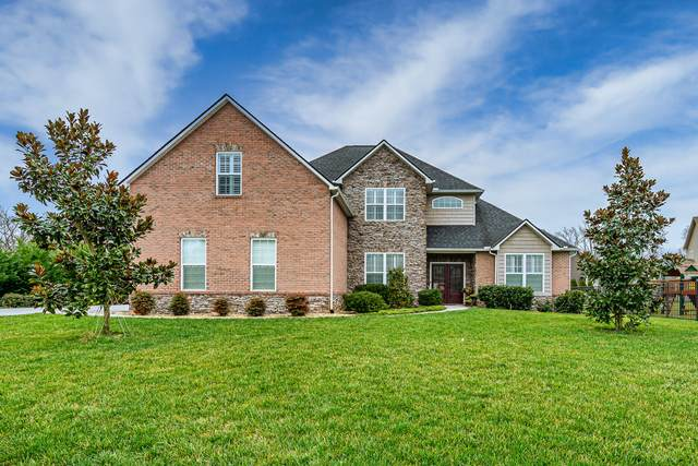 12204 Harpers Ferry Lane, Knoxville, TN 37922 (#1144892) :: Catrina Foster Group