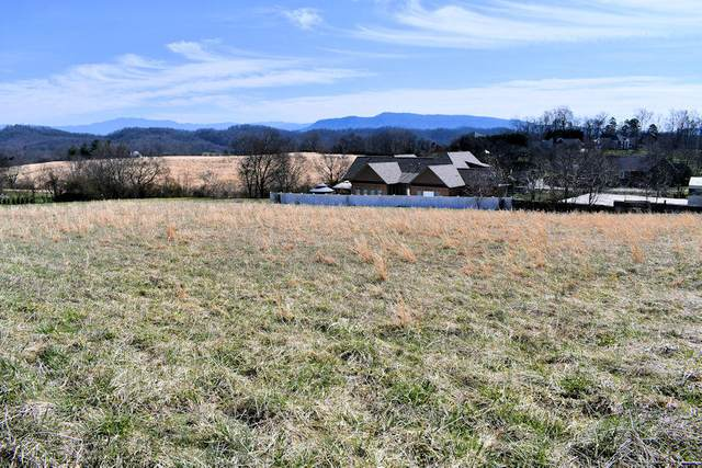 Lot 9 Instrumental Ave, Sevierville, TN 37876 (#1144993) :: The Terrell-Drager Team