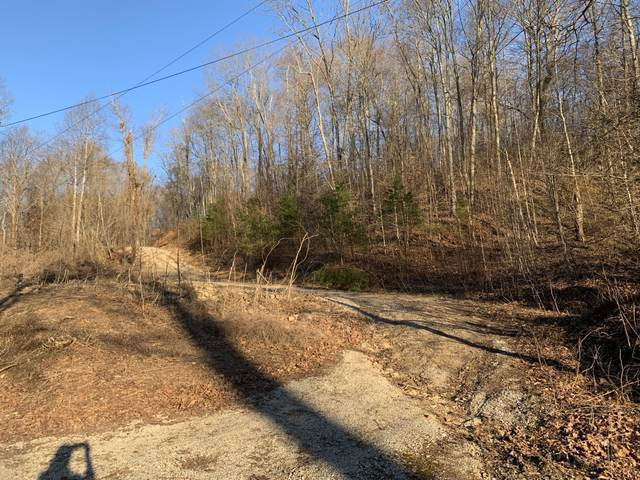405 Shady Pine Lane, Newcomb, TN 37819 (#1145091) :: JET Real Estate