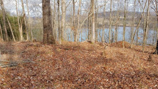 223 Lakeshore Vista Drive, Kingston, TN 37763 (#1145132) :: Adam Wilson Realty