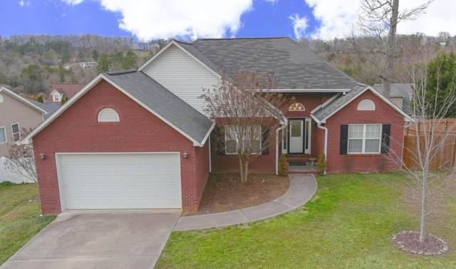 8119 Chestnut Hill Lane, Knoxville, TN 37924 (#1145268) :: Shannon Foster Boline Group