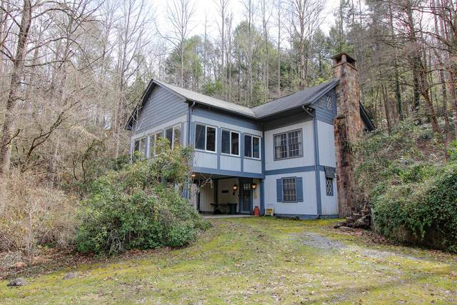 335 Washington Rd, Gatlinburg, TN 37738 (#1145453) :: Billy Houston Group