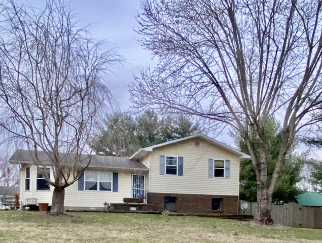 246 Lillie Lane, Tazewell, TN 37879 (#1145494) :: Shannon Foster Boline Group