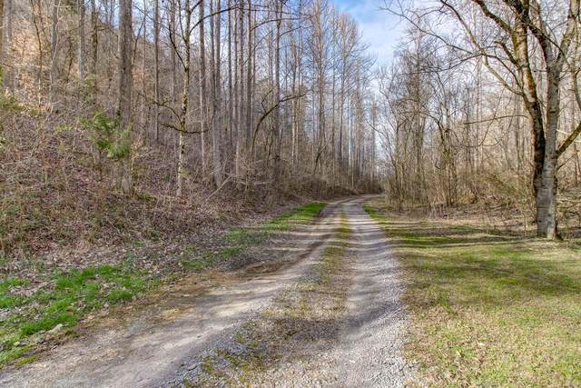 37 Acres Turkey Hollow Lane, Sevierville, TN 37876 (#1145497) :: Billy Houston Group