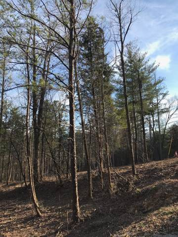 Lot 23 Sulpher Springs Way, Sevierville, TN 37862 (#1145500) :: A+ Team