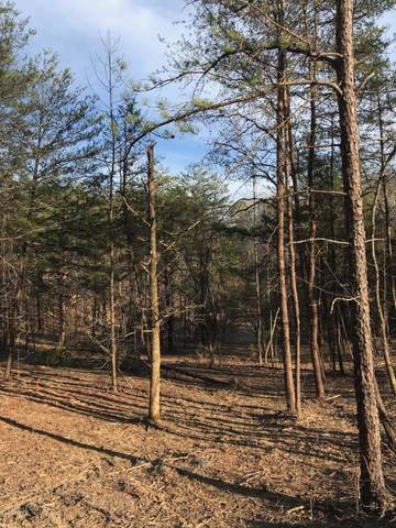 Lot 25 Sulpher Springs Way, Sevierville, TN 37862 (#1145503) :: A+ Team