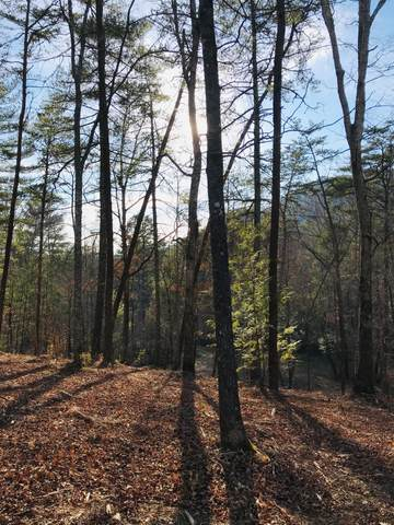 Lot 26 Ginas Way, Sevierville, TN 37862 (#1145505) :: A+ Team