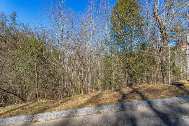 Lot #69 Smoky Ridge Way, Sevierville, TN 37862 (#1145545) :: Adam Wilson Realty