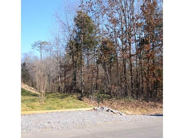 155 Daleyuhski Way, Loudon, TN 37774 (#1145624) :: Billy Houston Group