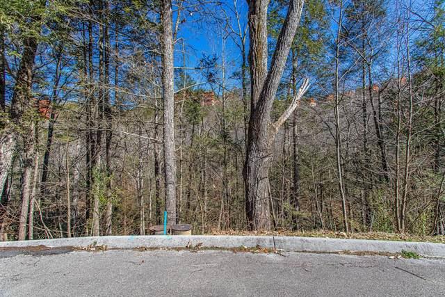 Lot #73 Smoky Ridge Way, Sevierville, TN 37862 (#1145666) :: Adam Wilson Realty