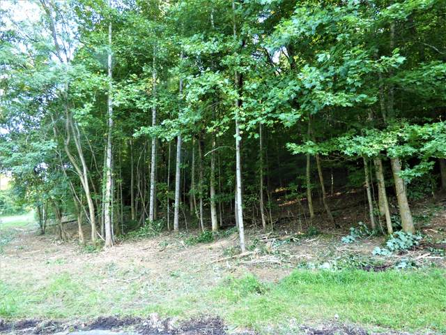 Tract 1 Flintrock Way, White Pine, TN 37890 (#1145703) :: The Cook Team