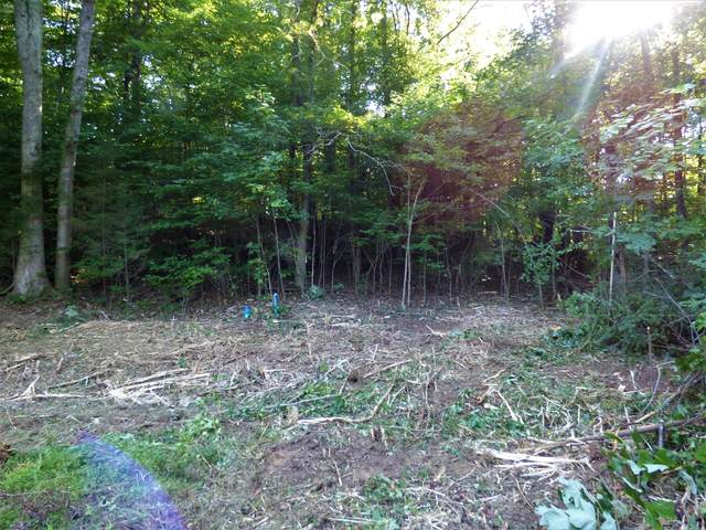 Tract 2 Flintrock Way, White Pine, TN 37890 (#1145704) :: The Cook Team