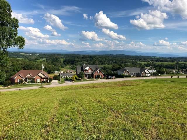Lot 64 Scenic View Drive, Talbott, TN 37877 (#1145710) :: Shannon Foster Boline Group