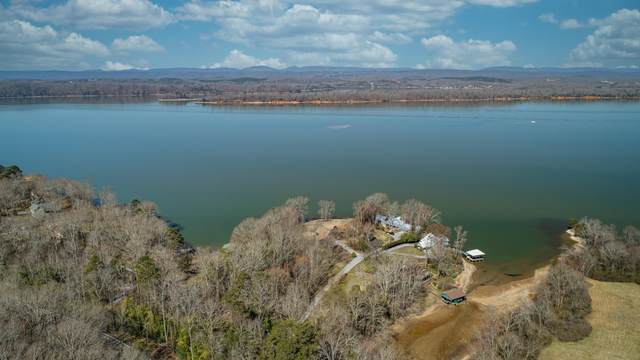 197 Pledge Point, Ten Mile, TN 37880 (#1145729) :: Shannon Foster Boline Group