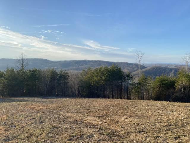 Panoramic Drive, Maynardville, TN 37807 (#1145732) :: JET Real Estate
