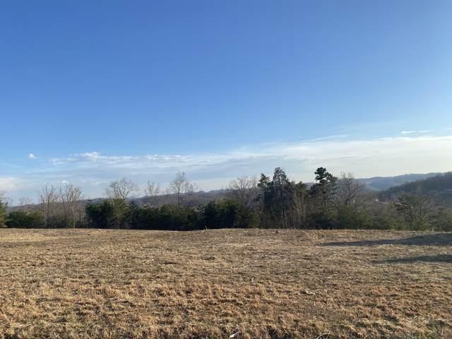 Panoramic Drive, Maynardville, TN 37807 (#1145737) :: JET Real Estate