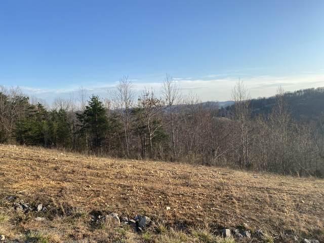 Panoramic Drive, Maynardville, TN 37807 (#1145745) :: JET Real Estate