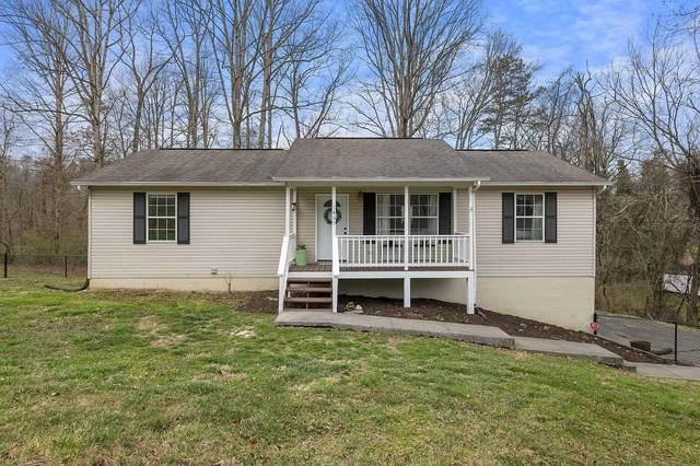 1405 Parkridge Drive, Knoxville, TN 37924 (#1146048) :: Billy Houston Group