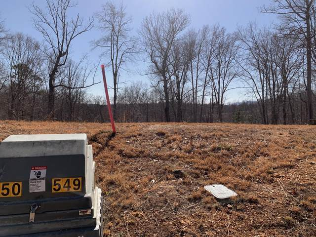 Lot 549 Hickory Way, LaFollette, TN 37766 (#1146076) :: The Cook Team