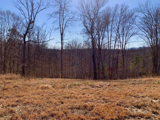Lot 521 Cedar Gate Lane, LaFollette, TN 37766 (#1146081) :: The Cook Team