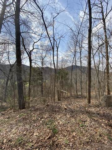 LOT 39 Stevia Way, Cosby, TN 37722 (#1146404) :: Tennessee Elite Realty