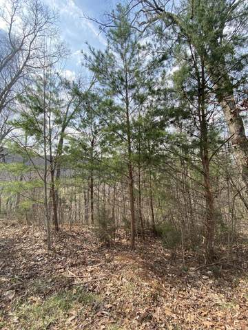 LOT 41 Stevia Way, Cosby, TN 37722 (#1146411) :: Tennessee Elite Realty