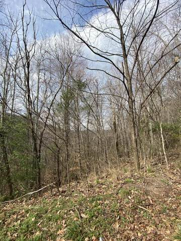 LOT 44 Schisandra Lane, Cosby, TN 37722 (#1146416) :: Tennessee Elite Realty