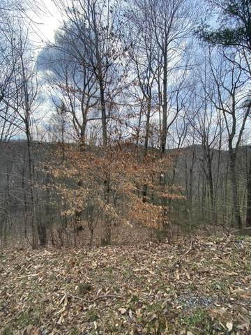 LOT 45 Schisandra Lane, Cosby, TN 37722 (#1146418) :: Tennessee Elite Realty