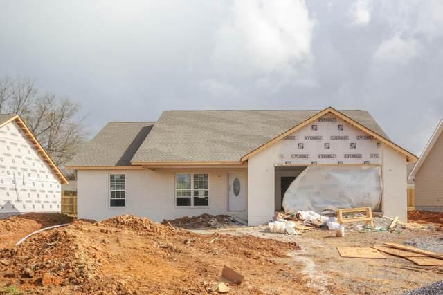 214 Horton Lane, Maryville, TN 37803 (#1146552) :: Shannon Foster Boline Group